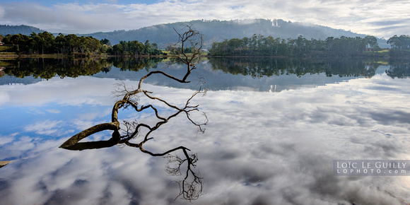 Huon Valley reflections